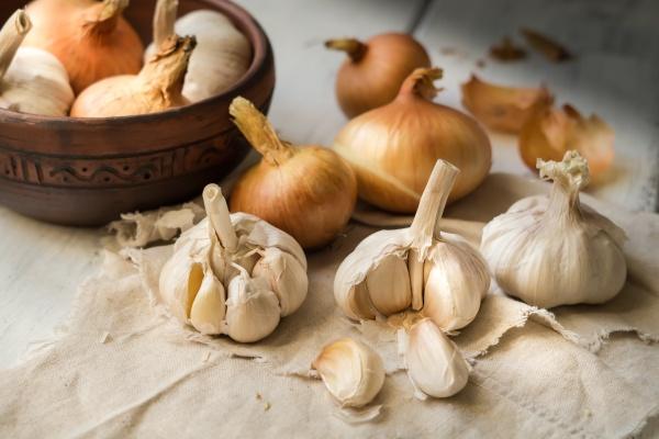 Rak jelita grubego – czosnek i cebula mogą zmniejszyć ryzyko choroby [Fot. IrinaBogach - Fotolia.com]