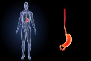 Rak przełyku - za jego rozwój odpowiadają bakterie wywołujące choroby dziąseł? [Fot. 7activestudio - Fotolia.com]