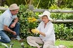 Rośliny: letnie nawożenie [© WavebreakMediaMicro - Fotolia.com]
