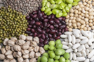 Rośliny strączkowe - dlaczego warto je jeść [Rośliny straczkowe, © maríamarmar - Fotolia.com]