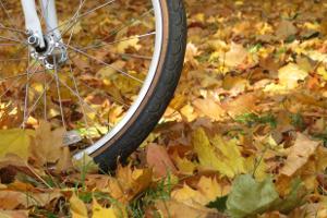Rower jesienią - czy to dobry pomysł? [Fot. Oleg - Fotolia.com]