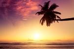 Samodzielnie organizowane wakacje i waluta - jak zaoszczędzić? [© Beboy - Fotolia.com]