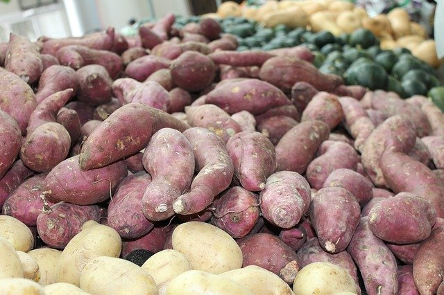 Schudnąć pomoże... woda po słodkich ziemniakach [fot. Daniel Albany from Pixabay]