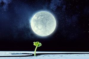 Sen jest potrzebny po to, by zapamiętywać i zapominać...  [© Sergey Nivens - Fotolia.com]