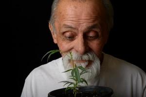 """Seniorzy na haju. Amerykańscy baby boomers palą """"trawkę"""" [© Laurin Rinder - Fotolia.com]"""