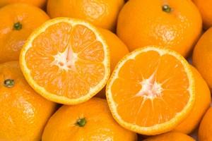 Sięgnij po zdrowe pomarańcze. 9 korzyści płynących z tych owoców [© sommaiphoto - Fotolia.com]