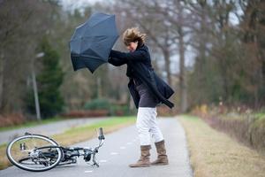 Silne wiatry: jedna ofiara śmiertelna [© Robert Hoetink - Fotolia.com]