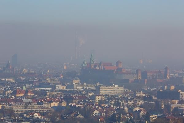 Smog. 7 sposobów jak się przed nim chronić [Fot. mychadre77 - Fotolia.com]