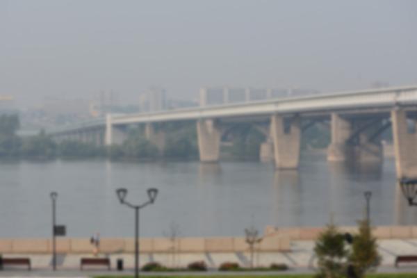 Smog niszczy kości [fot. S. Korczanow z Pixabay]