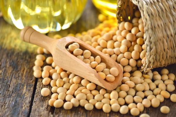 Soja pomocna w zmniejszeniu cholesterolu [Fot. sommai - Fotolia.com]