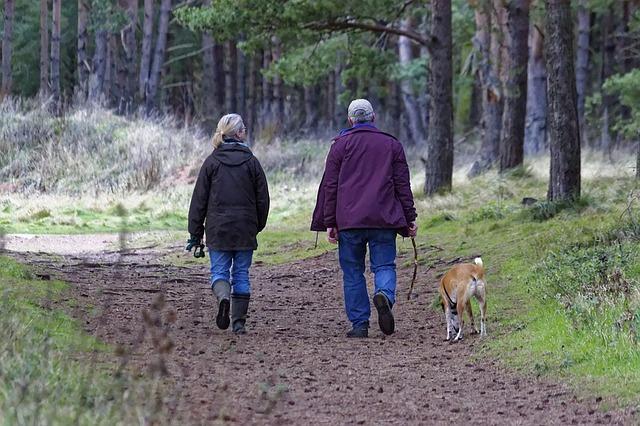 Sposób na aktywność w starszym wieku - posiadanie psa [fot. Kevin Phillips from Pixabay]