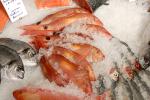 Sposób na wiosenne przesilenie - dieta bogata w ryby morskie [© Terence Mendoza - Fotolia.com]