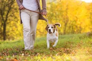 Sposób na zwyrodnienie stawów - sześć tysięcy kroków dziennie [© Halfpoint - Fotolia.com]