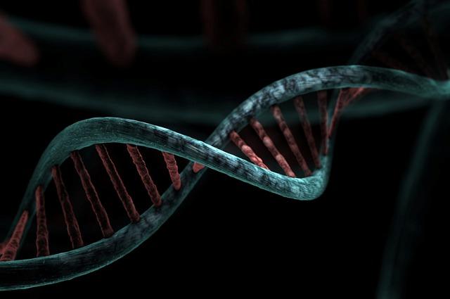 Starzenie się daje korzyści - z wiekiem spada ryzyko chorób genetycznych [fot. Miroslaw Miras from Pixabay]