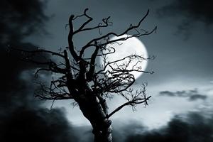 Strach ma wielkie oczy? Niezwyk�e fakty o l�ku, kt�rych nie znali�cie [© auipuistock - Fotolia.com]