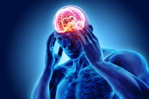 Stres kurczy mózg i zaburza pamięć [Fot. yodiyim - Fotolia.com]