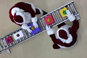 Świąteczny Barometr: wzrasta gorączka zakupów [© endostock - Fotolia.com]