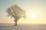 Światło leczy depresję [© joda - Fotolia.com]