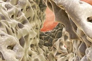 �wiatowy Dzie� Osteoporozy 2015 [© fotoliaxrender - Fotolia.com]