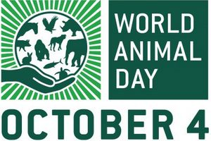 fot. World Animal Day