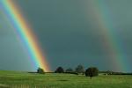 Szczęście to coś, co można odziedziczyć... [© Graham Prentice - Fotolia.com]