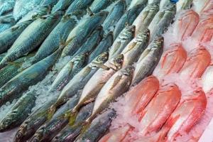 Sztuka wyboru ryb [Fot. elxeneize - Fotolia.com]