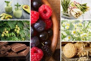 Te produkty pomogą pokonać stres [fot. collage Senior.pl]