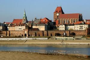 Toruń - Święto Miasta 2015  [© M.Tomczak - Fotolia.com]