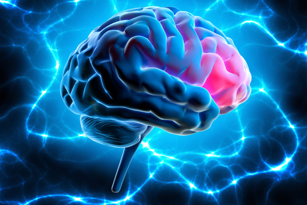 Tych składników potrzebujesz, by opóźnić starzenie się mózgu [Fot. peterschreiber.media - Fotolia.com]