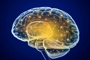 Udar mózgu. Ważna profilaktyka [© Alexandr Mitiuc - Fotolia.com]