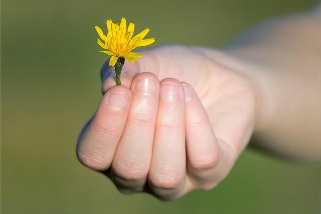 Wdzięczność - klucz do poczucia szczęścia? [fot. Volker Kraus from Pixabay]