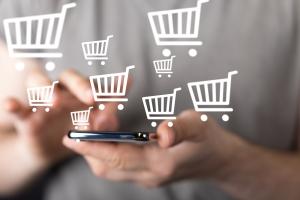 Większość polskich internautów robi zakupy w sieci [Fot. vege - Fotolia.com]