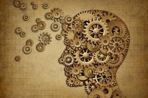 Większy nie znaczy lepszy, jeśli chodzi o mózg [© freshidea - Fotolia.com]