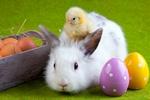 Wielkanoc w Europie [© FikMik - Fotolia.com]