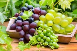 Winogrona - jedzenie anti-aging [© Pixelot - Fotolia.com]