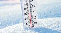 Wirusy nie lubią zimy? To mit