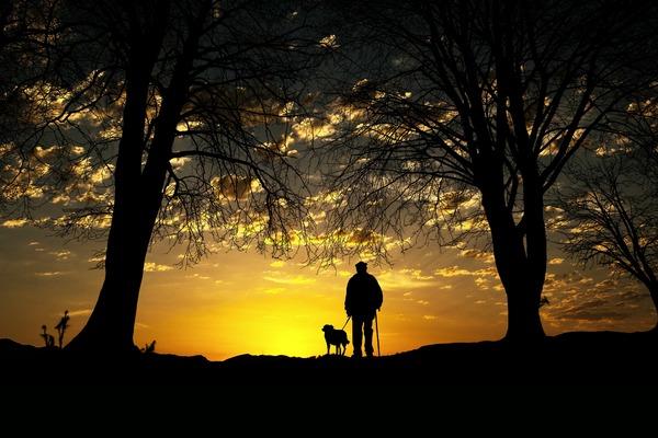 Właściciele psów żyją dłużej [fot.  cocoparisienne z Pixabay]