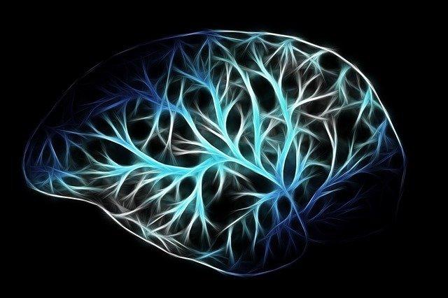 Wpływ na ryzyko demencji może mieć... osobowość [fot. Gerd Altmann from Pixabay]