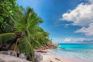 Wybierasz się na tropikalny urlop? Pamiętaj o szczepieniu [Fot. lucky-photo - Fotolia.com]