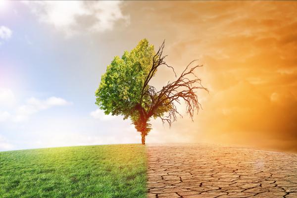Za ocieplenie klimatu płacimy zdrowiem. Seniorzy są szczególnie zagrożeni [Fot. jozsitoeroe - Fotolia.com]
