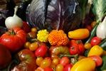 Zadbaj o zdrowie jesienią [© Crisferra - Fotolia.com]