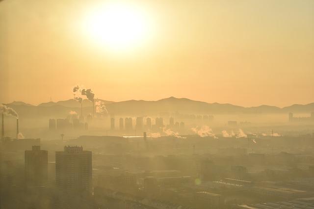 Zanieczyszczenie powietrza zwiększa częstość hospitalizacji z powodu zapalenia płuc [fot. Götz Friedrich z Pixabay]