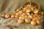 Zaskakujące zastosowania cebuli  [© JackF - Fotolia.com]