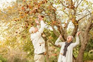 Zdrowa jesień? To nie takie trudne [© WavebreakMediaMicro - Fotolia.com]