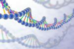 Zdrowie w genach
