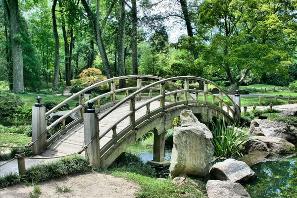 Zielone tereny w mieście trudne do przecenienia - mogą wydłużyć życie [fot.  JamesDeMers z Pixabay]