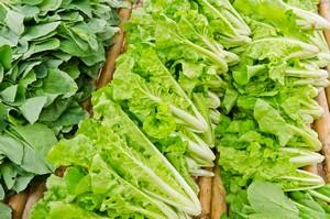 Zielone warzywa liściaste chronią przed demencją [© gamelover - Fotolia.com]