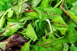 Zielone warzywa liściaste pomagają zachować dobrą pamięć na starość [© fotofabrika - Fotolia.com]