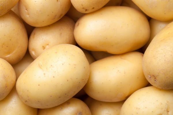 Ziemniak nie jest zły - nie tuczy [Fot. Bozena Fulawka - Fotolia.com]