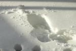 Zima intensyfikuje rozmaite problemy zdrowotne [fot. G. Gacki]